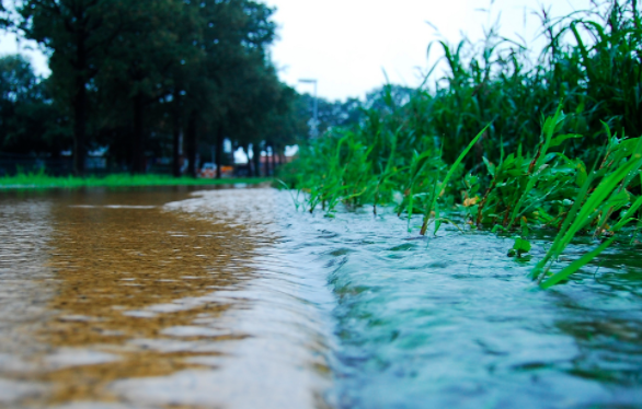 iSCAPE on green design for stormwater management
